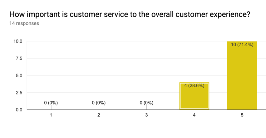Importance of Customer Experience Results
